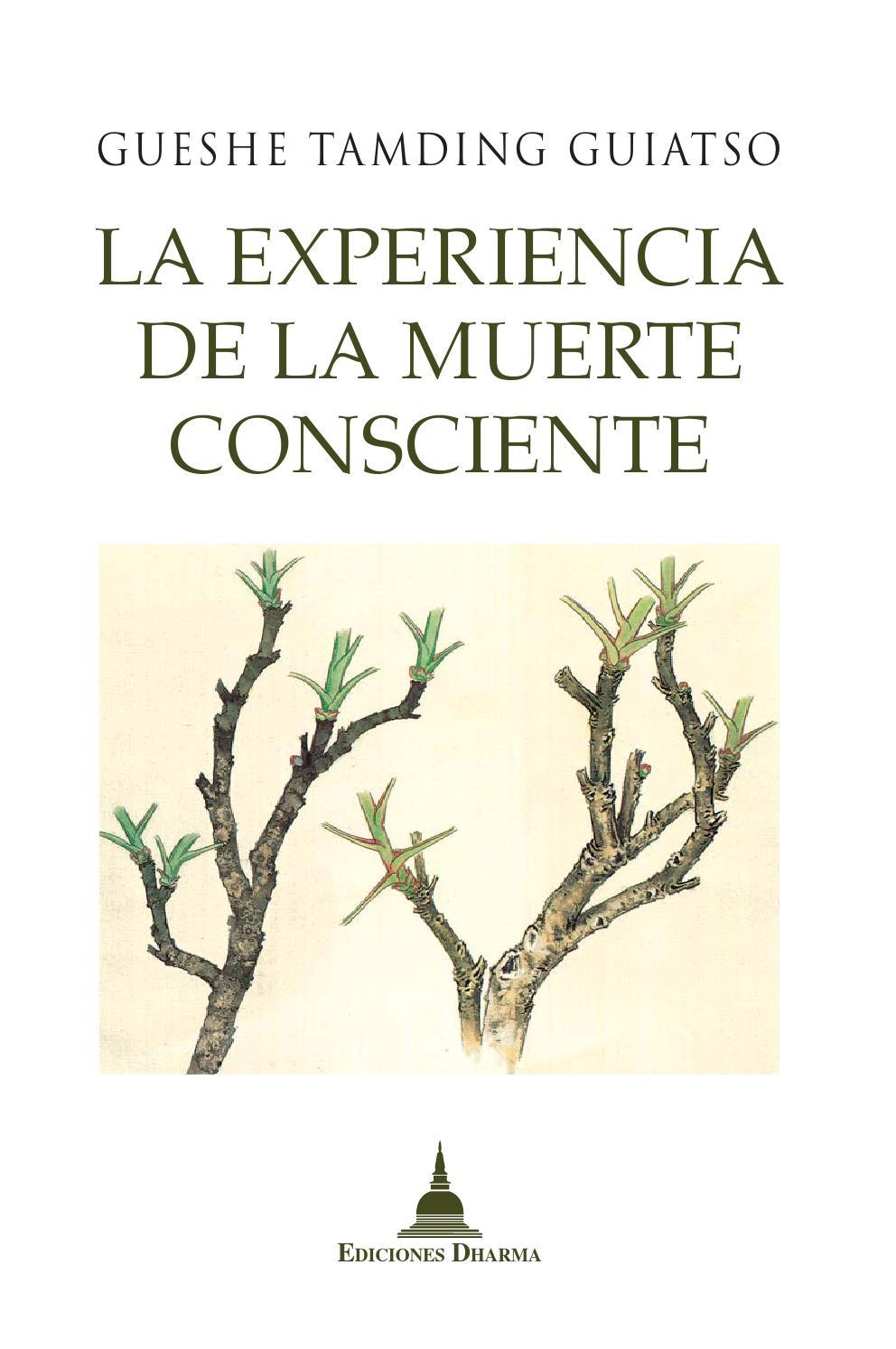 portada La experiencia de la muerte consciente